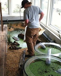 A technician monitors reclaimed water quality at Heron's Head Park EcoCenter in San Francisco.