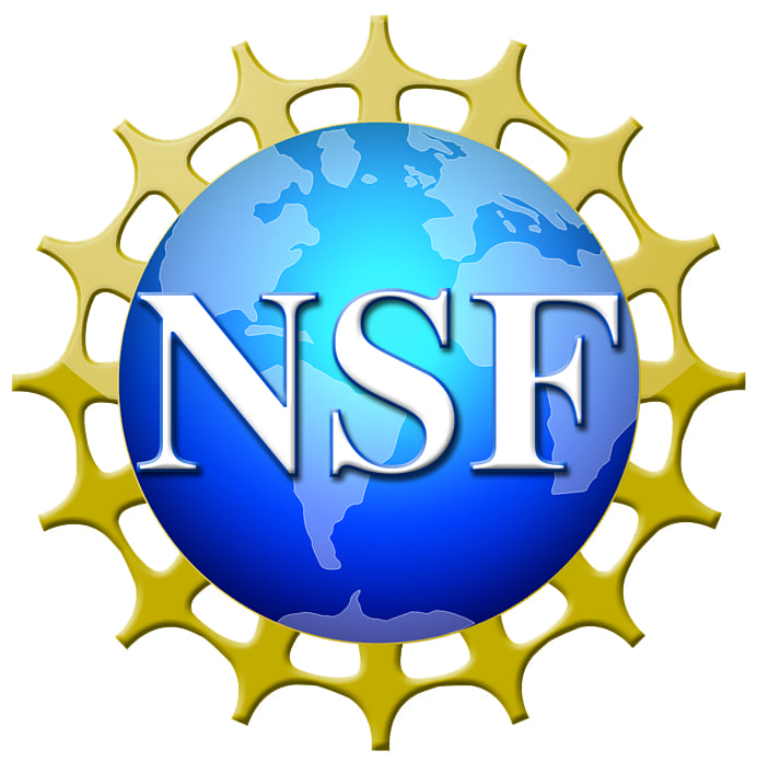 NSF 4 Color Logo with Shading - Print