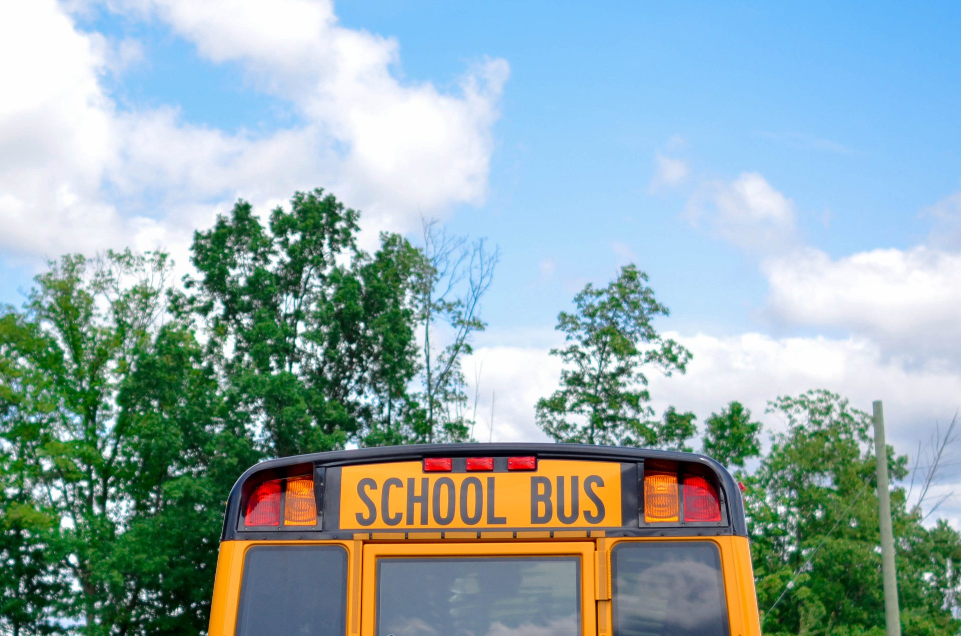 Picture of the back of a school bus, the sky and trees.